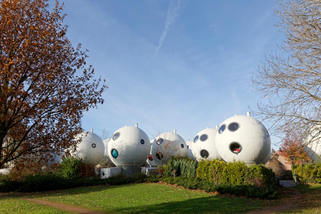 Bollenveld- Den Bosch