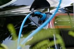 EcoTap bij Brabant Wonen, 's-Hertogenbosch, 19 6 2020